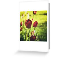 When Spring Was Here Greeting Card