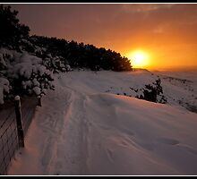 A snowy path to the sunset by Shaun Whiteman