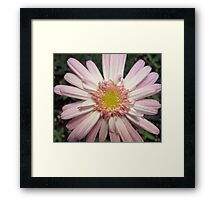 Pink Ribbon Flower Framed Print