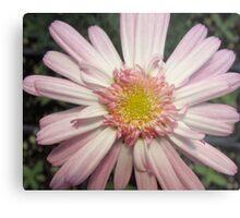 Pink Ribbon Flower Metal Print