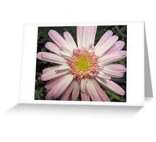 Pink Ribbon Flower Greeting Card