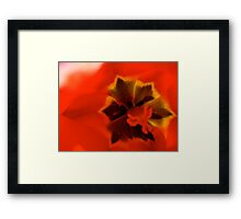 In Flander's Feilds The Poppies Grow Framed Print
