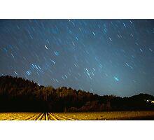Vineyard Stars Photographic Print