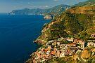 Riomaggiore, Cinque Terre, Liguria, Italy by Andrew Jones