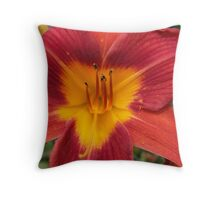 Mom's Daylilies 2 Throw Pillow