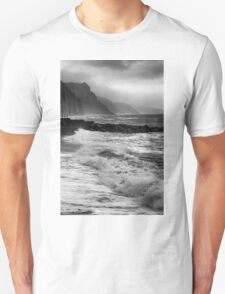 STORMY SHORE T-Shirt
