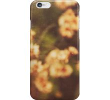 Last summer iPhone Case/Skin