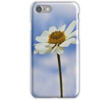 Daisy Daisy iPhone Case/Skin