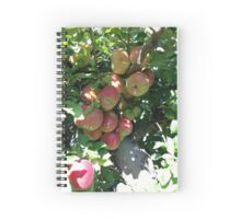 At The Orchard Spiral Notebook