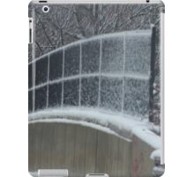 Winter Clings to Spring iPad Case/Skin