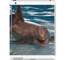 Baltimore Aquarium Series 11 iPad Case/Skin