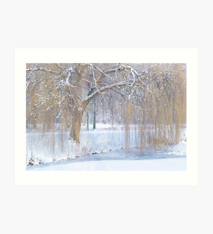 Snow in the willows Art Print