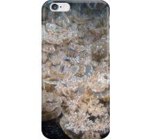 Baltimore Aquarium Series 9 iPhone Case/Skin