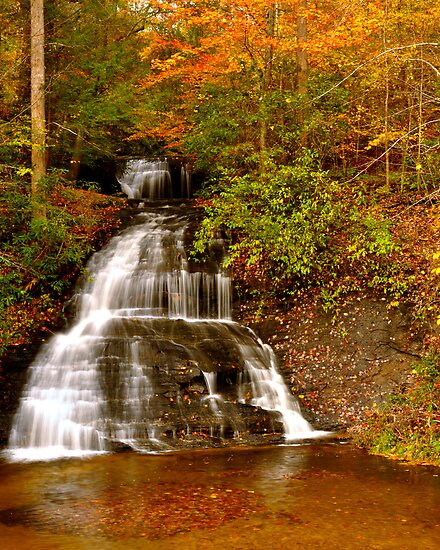 Wildcat Branch Waterfall by Miles Moody