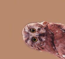 Hey you!! by DoraBirgis