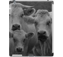 Cows in black and white iPad Case/Skin
