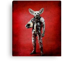 Space is calling Canvas Print
