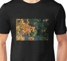 Autumn Light and Dark Unisex T-Shirt