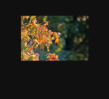 Autumn Light and Dark Unisex T-Shirt