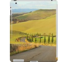 Tuscan Road iPad Case/Skin