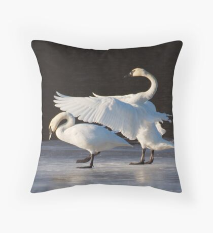 Swan Ballet on Ice on the Mississippi Throw Pillow