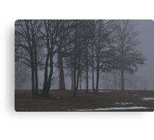Giants in the Mist Canvas Print