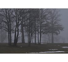 Giants in the Mist Photographic Print