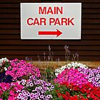 Parking by UncaDeej