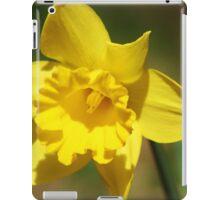 Yellow Daffodil iPad Case/Skin