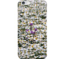 Thousands of Little Sunshines iPhone Case/Skin