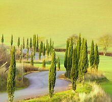 Tuscan Green by Emma Holmes