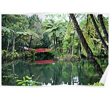 Old lake with a red bridge in subtropical rainforest Poster