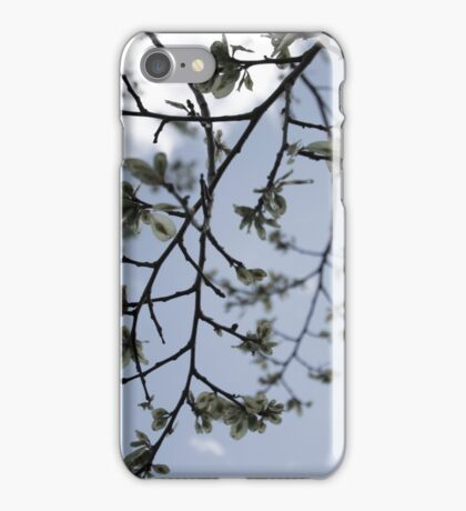 Picnic Sky iPhone Case/Skin