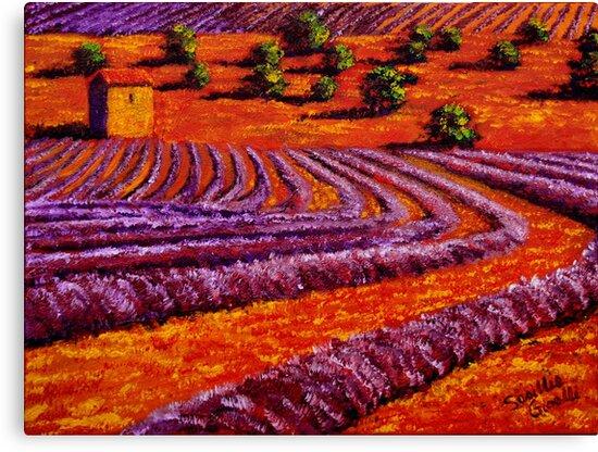 Provençal Country Lavender by sesillie