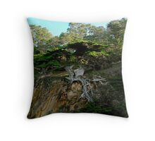 Old Veteran - Point Lobos State Reserve Throw Pillow