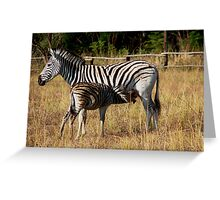 Stripes and baby stripes Greeting Card