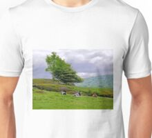 Weather report Unisex T-Shirt