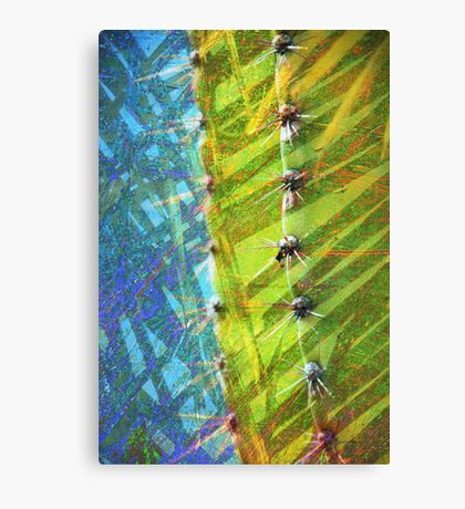 Cactus Poetry Canvas Print