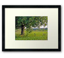 Country scene Framed Print
