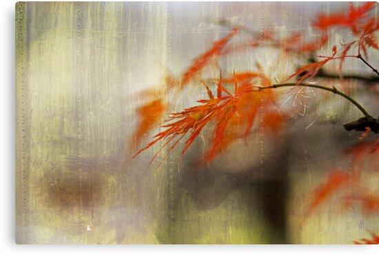 Serenity by Marie Wintzer