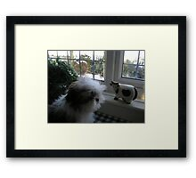 i WANT THAT COW !!!!!!! Framed Print