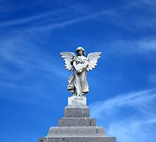 Semaphore Archangel by Christopher Biggs