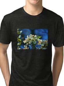 Dogwood in Bloom Tri-blend T-Shirt