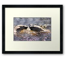 Water love Framed Print