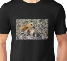 Vixen and Pup Snuggle Unisex T-Shirt