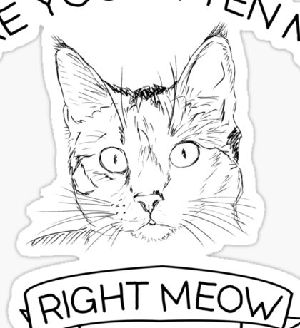 Are you kitten me right meow Sticker