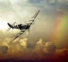 Spitfire Passing Through The Storm  by J Biggadike