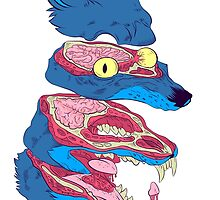 Dissected Wolf by freezinghot