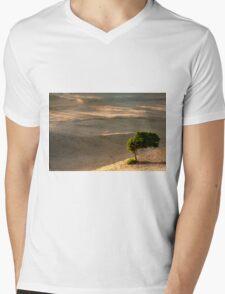 Windsurfer  Mens V-Neck T-Shirt