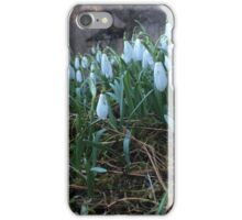 Snowdrops flowers iPhone Case/Skin